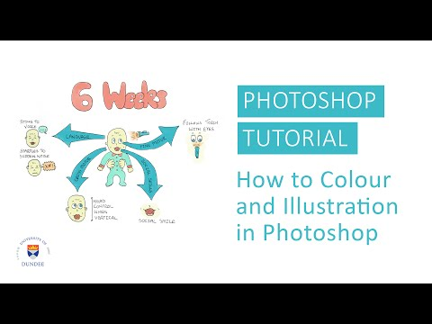 Photoshop Tutorial: How to Colour an Illustration in Photoshop by Annie Campbell