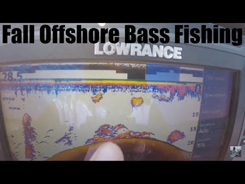 Lake Fork Bass Fishing: Offshore Structure Tips For Fall