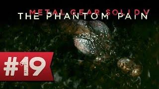Metal Gear Solid 5 : NUIT NOIRE | Let