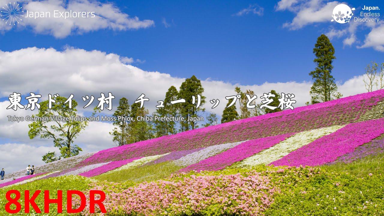 アクセス 村 東京 ドイツ 東京ドイツ村のイルミネーション!東京からのアクセス方法いろいろ!