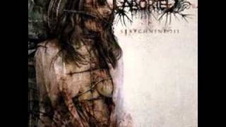 Aborted - The Obfuscate