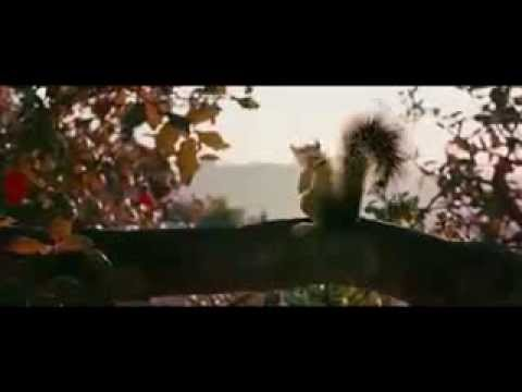 squirrels horror movie teaser trailer youtube