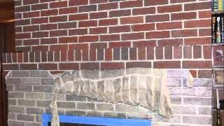 Fireplace Cleaning - Waterless