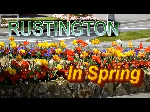 England Tourist Rustington Sussex