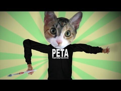 Why I Hate PETA