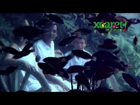 Xcaret Park Riviera Maya Attractions