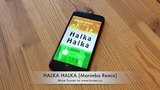 Halka Halka Ringtone | Sunidhi Chauhan & Divya Kumar Tribute | Fanney Khan Music Marimba Ringtone