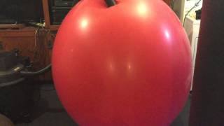 Video Red Climb In Balloon Play in zentai 2 download MP3, 3GP, MP4, WEBM, AVI, FLV April 2018