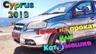 Тачка на прокат или кот в мешке, Аренда автомобиля на Кипре, Wife Drive, Protaras, Cyprus 2018