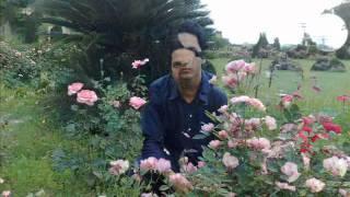 Adnan Aadi pix.wmv