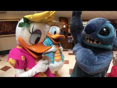 He Loves Me, He Loves Me Not//Donald, Daisy, Minnie, Stitch//Disneyland