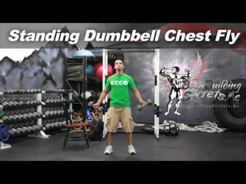 Standing Dumbbell Chest Fly