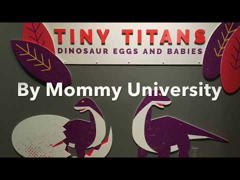 Tiny Titans at The Academy of Natural Sciences