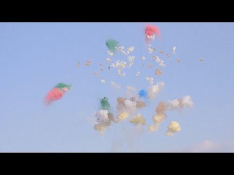 Diosque y Los Besos - Alegría Dispersa (Videoclip)