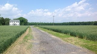 26750 Anthony Mill Road, Denton, MD - Farm - www.sunsetproperties.net