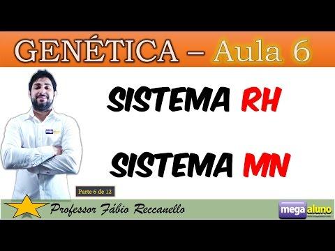 Sistema Rh, MN e eritroblastose fetal - Genética (Parte 6 de 12)
