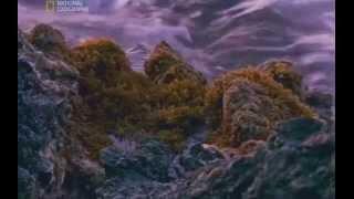 National Geographic - Чиста Наука: Произходът на живота (Част 1)