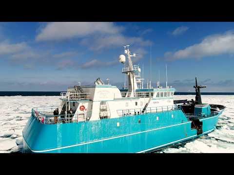 Alaskan Leader Seafoods Wild Alaska Cod