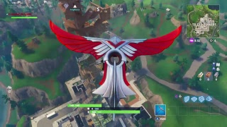 Fornite battle royale Playground something cool?