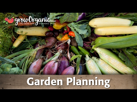 Garden Planning: Crop Rotation, Succession Planting & More