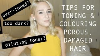 TIPS FOR TONING or COLOURING POROUS & DAMAGED HAIR - my experiences