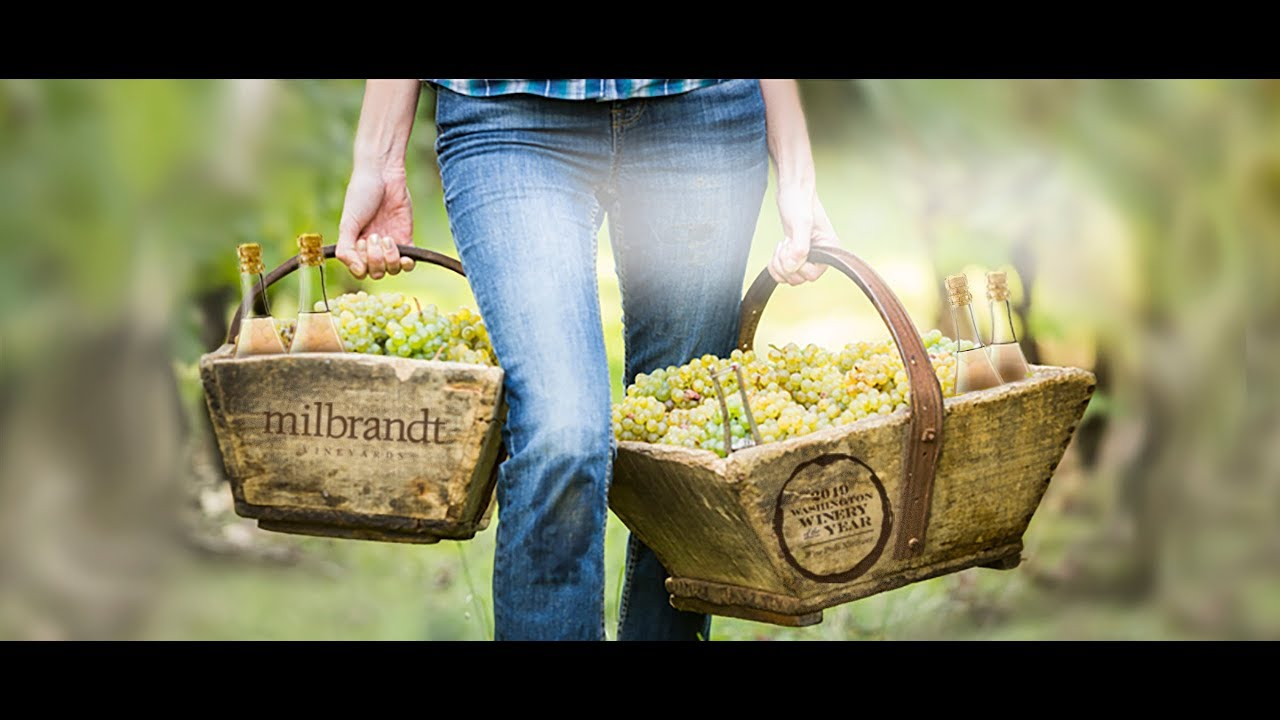 Milbrandt Vineyards' Bottle your Charity Contest