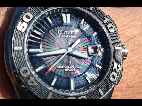 The Citizen Signature Perpetual Diver BL1258-53L Wristwatch: The Full Nick Shabazz Review