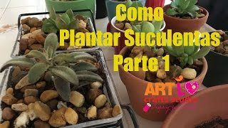 Como Plantar Suculentas Parte 1 – How To Plant Succulents Part 1