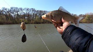 Видеообзор СНАСТИ на КАРАСЯ и КАРПА от ДРУГА Днестр рыбалка это жизнь