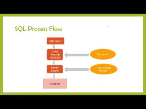 Basics of SQL & Critical thinking