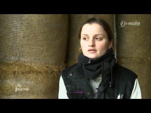 Vues sur Loire : Balade en Rabelaisiede YouTube · Durée:  26 minutes 2 secondes
