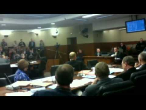 Polymet hearing MN State Capitol 2-11-2014 Financial Assurance