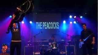 Peacocks - Somebody