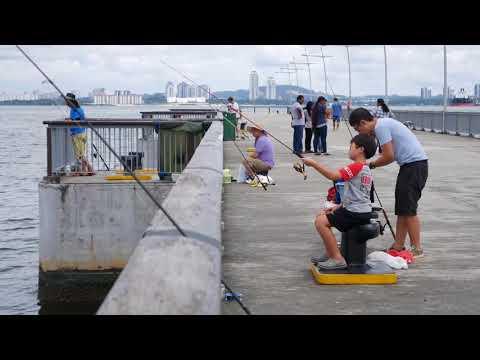 Woodlands Waterfront Park [4K Ultra HD]