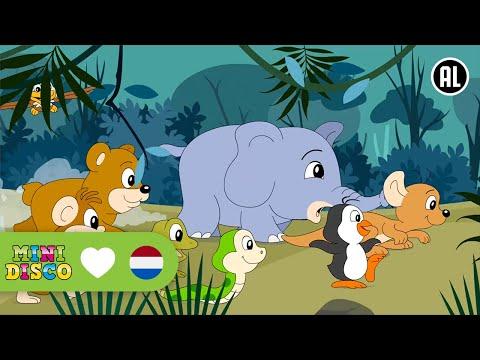 De Dieren Uit De Dierentuin | Kinderliedjes | Minidisco