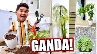 MAGTANIM TAYO SA BAGONG BAHAY (ANG FRESH NG INDOOR PLANTS!!) | LC VLOGS #372