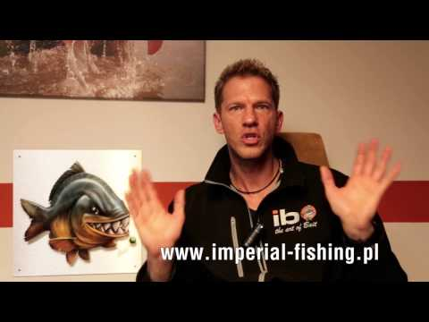 Max Nollert: comment to present situation -  Imperial Fishing goes Poland!