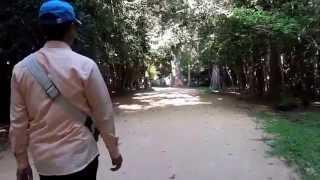 プリヤ・カーン (Preah Khan)の参道で聞こえた蝉の声