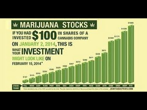 Marijuana Penny Stocks 2015 – Warning From Tim Sykes