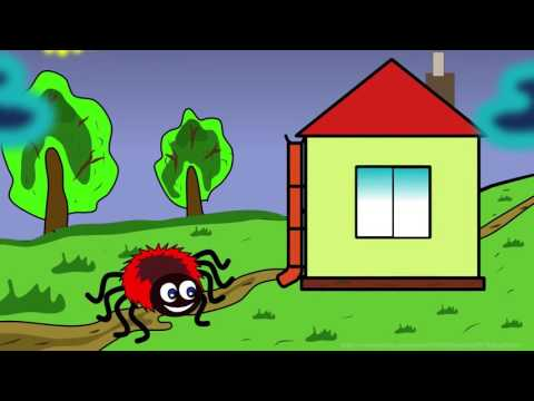 The itsy bitsy spider - [1 hour loop]