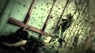 Machine Head // Locust (OFFICIAL VIDEO)