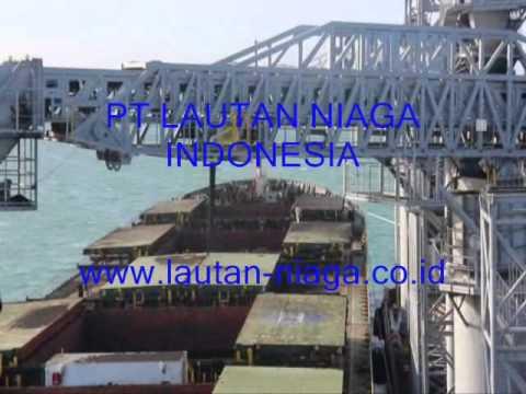 MV TINA Loading Coal At Taboneo Indonesia