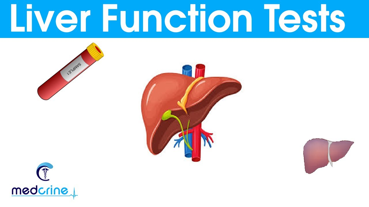what is ggtp in liver function test