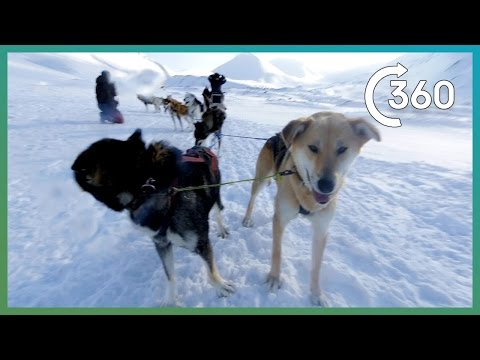 Epic360 Husky Sledding In Svalbard!-Earth Unplugged