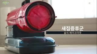 공기수비대 고온 습식 베이크아웃 새집증후군 시공과정