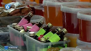 Для любителей меда на площади Победы стартовала ярмарка «Пчёлкино»