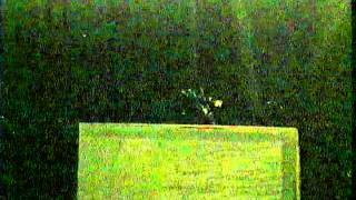 Xcon 2005 - Jim Marrs - US Govt Secret Remote Viewing Program and UFOs