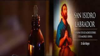 SANTO DE HOY 15 DE MAYO SAN ISIDRO LABRADOR