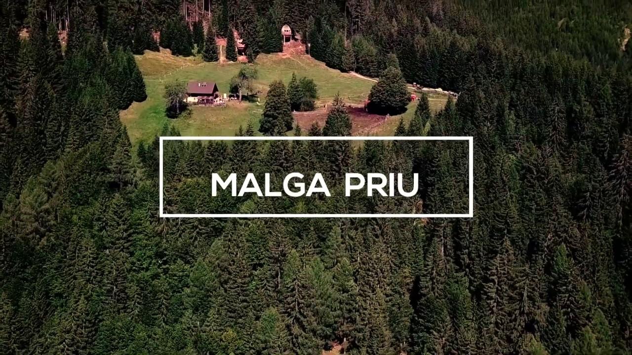 Casa Sull Albero Malga Priu Prezzi malga priu