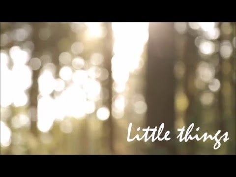 Little Things (Instrumental - Orchestral Oboe Concerto)